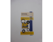 KIT JOIN MAITRE CYLINDRE AP RACING 3125 (19mm)