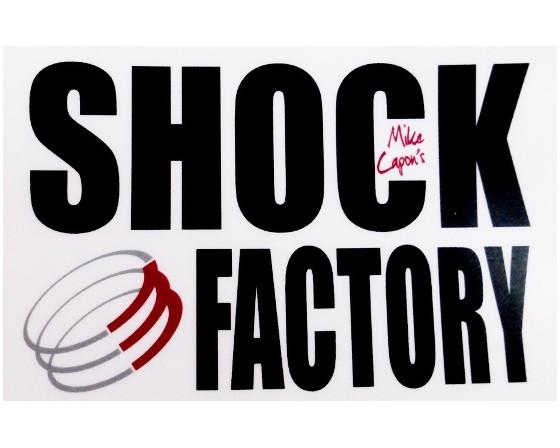 AMORTISSEURS KAWASAKI W650/800 SHOCK FACTORY